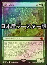 [FOIL] 消化の泥塊/Consuming Blob ● (セットブースター版) 【日本語版】 [MID-緑MR]