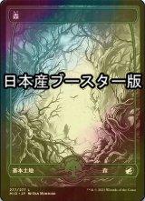 [FOIL] 森/Forest No.277 ● (セットブースター版) 【日本語版】 [MID-土地C]