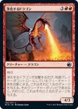 浄化するドラゴン/Purifying Dragon 【日本語版】 [MID-赤U]
