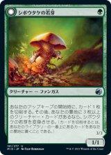 シボウタケの若芽/Deathbonnet Sprout 【日本語版】 [MID-緑U]