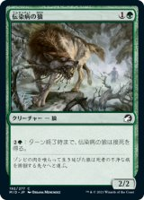 伝染病の狼/Pestilent Wolf 【日本語版】 [MID-緑C]