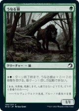 うなる狼/Snarling Wolf 【日本語版】 [MID-緑C]