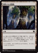 進化する未開地/Evolving Wilds 【日本語版】 [MM2-茶C]