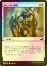 [FOIL] 根生まれの防衛/Rootborn Defenses 【日本語版】 [MM3-白C]