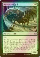 [FOIL] アラクナスの紡ぎ手/Arachnus Spinner 【日本語版】 [MM3-緑U]