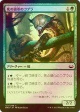 [FOIL] 死の頭巾のコブラ/Death-Hood Cobra 【日本語版】 [MM3-緑C]