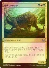 [FOIL] 芽吹くトリナクス/Sprouting Thrinax 【日本語版】 [MM3-金U]