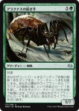 アラクナスの紡ぎ手/Arachnus Spinner 【日本語版】 [MM3-緑U]