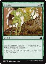 生き返り/Revive 【日本語版】 [MM3-緑C]