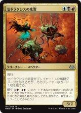 セドラクシスの死霊/Sedraxis Specter 【日本語版】 [MM3-金U]