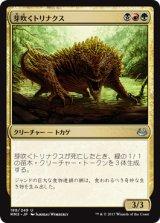 芽吹くトリナクス/Sprouting Thrinax 【日本語版】 [MM3-金U]