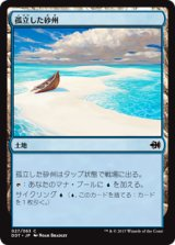 孤立した砂州/Lonely Sandbar 【日本語版】 [MVG-土地C]