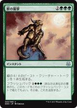獣の襲撃/Beast Attack 【日本語版】 [MVM-緑U]