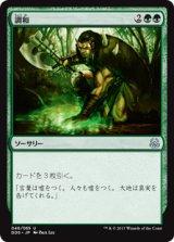 調和/Harmonize 【日本語版】 [MVM-緑U]《状態:NM》