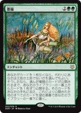 豊穣/Abundance 【日本語版】 [NVO-緑R]