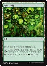 カルニの庭/Khalni Garden 【日本語版】 [NVO-土地]
