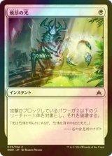 [FOIL] 焼尽の光/Searing Light 【日本語版】 [OGW-白C]
