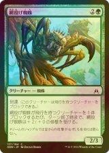 [FOIL] 網投げ蜘蛛/Netcaster Spider 【日本語版】 [OGW-緑C]