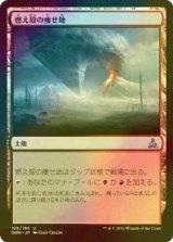 [FOIL] 燃え殻の痩せ地/Cinder Barrens 【日本語版】 [OGW-茶U]