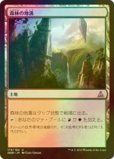 [FOIL] 森林の地溝/Timber Gorge 【日本語版】 [OGW-茶U]