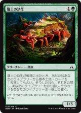 壌土の幼生/Loam Larva 【日本語版】 [OGW-緑C]《状態:NM》