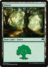 森/Forest No.270【英語版】 [ORI-土地]《状態:NM》