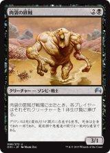 肉袋の匪賊/Fleshbag Marauder 【日本語版】 [ORI-黒U]《状態:NM》