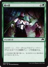 蔦の罠/Vine Snare 【日本語版】 [ORI-緑C]
