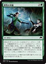 野性の本能/Wild Instincts 【日本語版】 [ORI-緑C]