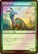[FOIL] 冠羽の群れ使い/Crested Herdcaller 【日本語版】 [RIX-緑U]
