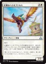壮麗なヘリオプテルス/Majestic Heliopterus 【日本語版】[RIX-白U]