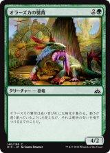 オラーズカの襞背/Orazca Frillback 【日本語版】[RIX-緑C]