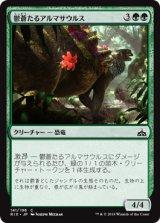 鬱蒼たるアルマサウルス/Overgrown Armasaur 【日本語版】[RIX-緑C]