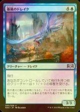 [FOIL] 暴風のドレイク/Windstorm Drake 【日本語版】 [RNA-青U]