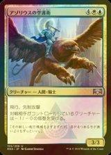 [FOIL] アゾリウスの空護衛/Azorius Skyguard 【日本語版】 [RNA-金U]