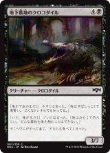 地下墓地のクロコダイル/Catacomb Crocodile 【日本語版】  [RNA-黒C]《状態:NM》