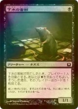 [FOIL] 下水の害獣/Drainpipe Vermin  【日本語版】 [RTR-黒C]