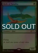 【予約】 [FOIL] 極楽鳥/Birds of Paradise 【英語版】 [SLD-R] (予約G)