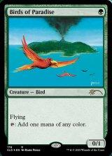 【予約】 極楽鳥/Birds of Paradise 【英語版】 [SLD-R] (予約G)