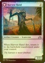 [FOIL] 収穫の手/Harvest Hand 【英語版】 [SOI-灰U]