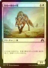 [FOIL] 悪魔の棲家の狐/Devilthorn Fox 【日本語版】 [SOI-白C]