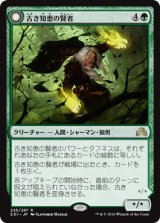 古き知恵の賢者/Sage of Ancient Lore 【日本語版】 [SOI-緑R]《状態:NM》