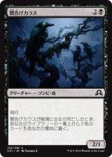 闇告げカラス/Crow of Dark Tidings 【日本語版】 [SOI-黒C]