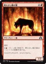 燃えさし眼の狼/Ember-Eye Wolf 【日本語版】 [SOI-赤C]