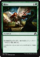 翼切り/Clip Wings 【日本語版】 [SOI-緑C]