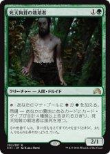 死天狗茸の栽培者/Deathcap Cultivator 【日本語版】 [SOI-緑R]