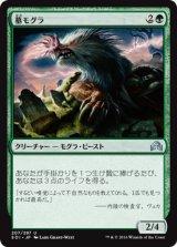 墓モグラ/Graf Mole 【日本語版】 [SOI-緑U]