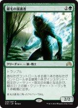 銀毛の援護者/Silverfur Partisan 【日本語版】 [SOI-緑R]《状態:NM》