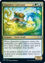 【予約】クアンドリクスの栽培者/Quandrix Cultivator 【英語版】 [STX-金U]