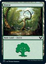 森/Forest No.374 【英語版】 [STX-土地C]